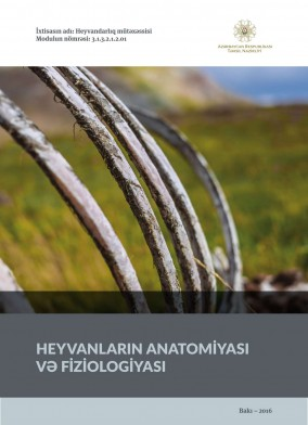 Heyvanların anatomiyası və fiziologiyası