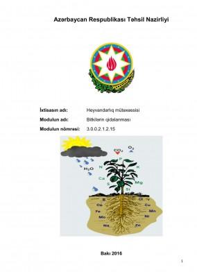 Bitkilərin qidalanması